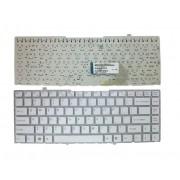Tastatura Laptop Sony Vaio VGN-FW21Z