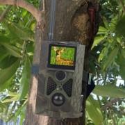 HC-550M Wild Camera Photo Traps Digital Hunting Wildlife Camera GSM MMS HC550M Hunting Camera