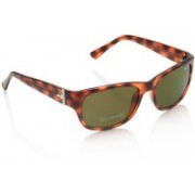 Pepe Jeans Rectangular Sunglasses(Brown)