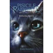 Pisicile Razboinice - Noua profetie. Cartea a X-a: Stralucirea stelelor/Erin Hunter