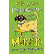 Puppy Academy: Murphy and the Great Surf Rescue, Paperback/Gill Lewis