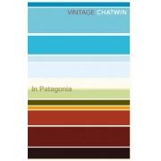 Reisverhaal In Patagonia | Bruce Chatwin