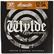 Dunlop ZWP1254 Zakk Wylde Icon Series Signature Acoustic Guitar Strings Light .012-.054 6 Strings/Set