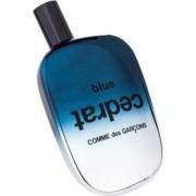 Blue Cedrat - Comme des garçons 100 ml EDP Campione Originale