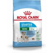 ROYAL CANIN MINI STARTER - száraz táp vemhes szuka és kistestű kölyök kutya részére 8,5 kg