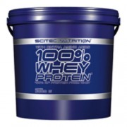 100% Whey protein 5000g tejcsoki Scitec Nutrition