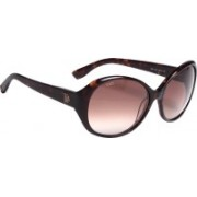 Tod's Round Sunglasses(Brown)