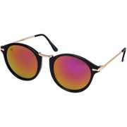Walrus Jackson Golden Mirror Color Unisex Oval Sunglass - WS-JKSN-230206