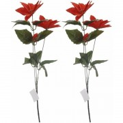 Bellatio Decorations 2x Rode Kerstster bloem 66 cm