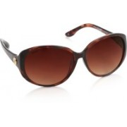 Glares by Titan Over-sized Sunglasses(Brown)