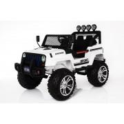 Ricco S2388 4x4 Elektrische Auto met afstandbediening, LED verlichting en Muziek