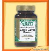 Camu Camu Berries (60 kap.)