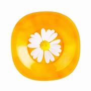 Набор суповых тарелок 6шт Luminarc Carina Paquerette Melon G5973