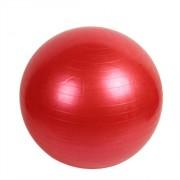 Топка за Упражнения c диаметър 65см