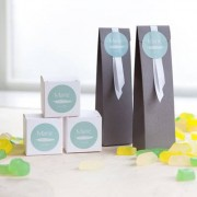 smartphoto Partybox taupe
