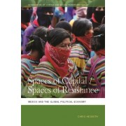 Spaces of Capital/Spaces of Resistance: Mexico and the Global Political Economy
