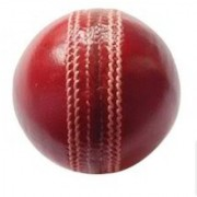 Cricket Leather Ball(4 piece/part)
