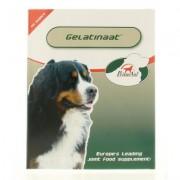 Gelatinaat gewrichten hond
