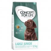 Concept for Life Large Junior - 12 kg