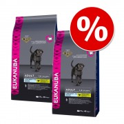 Икономична опаковка: Eukanuba суха храна за кучета - Adult Breed Specific Golden Retriever (2 x 12 кг)