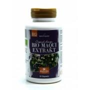 Maqui bio (extrait) - 90 gélules - 600 mg