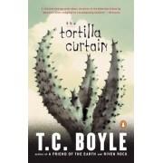 The Tortilla Curtain, Paperback