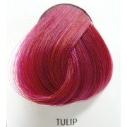 barva na vlasy DIRECTIONS - Tulip