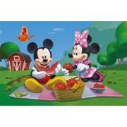 Puzzle - La picnic cu Mickey si Minnie 66 piese