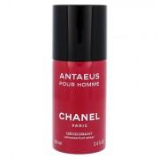 Chanel Antaeus Pour Homme deodorante spray senza alluminio 100 ml