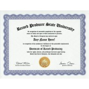 Record Producer Producing Records Degree: Custom Gag Diploma Doctorate Certificate (Funny Customized Joke Gift - Novelty Item)