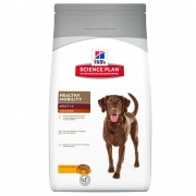 Hill's Adult Large Breed Healthy Mobility con pollo - 12 kg