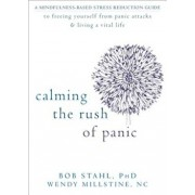 Calming the Rush of Panic: A Mindfulness-Based Stress Reduction Guide to Freeing Yourself from Panic Attacks & Living a Vital Life, Paperback/Bob Stahl