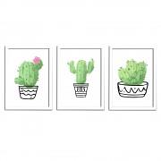 Kit 3 Quadros Decorativo Branco Com Poster Tema Cactus 48 x 35 cm