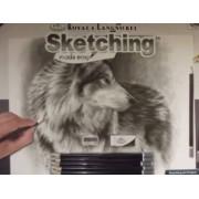 Set pentru realizarea unui desen in creion - Ochi precauti