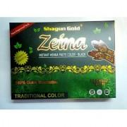 Shagun Gold Black Ziena Paste Herbal Tube Temporary Tattoo Body Art Mehandi Instant Tattoo Paste 20 Pcs
