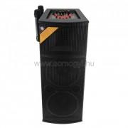 SAL Aktív hangdoboz, 2x25cm, 2xMIC, BT/MP3 SOM-PAX_225B