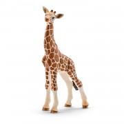 Pui Girafa Schleich - 14751