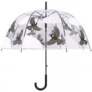 Átlátszó esernyő, cinege