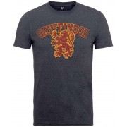 PhD Harry Potter - Gryffindor Sport T-Shirt