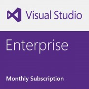 Microsoft Visual Studio Enterprise - Monthly subscription (1 Month)