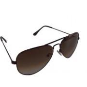 Swiss Military Aviator Sunglasses(Brown)