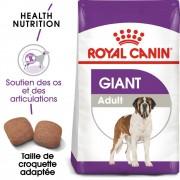 Royal Canin Giant Adult pour chien - 2 x 15 kg