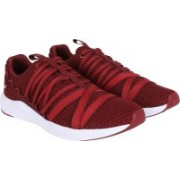Puma Prowl Alt 2 NS Wn's Running Shoes For Women(Maroon)