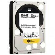 Western Digital 250 GB WD RE SATA III 7200 RPM 64 MB Cache Bulk/OEM Enterprise Hard Drive WD2503ABYZ