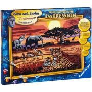 Safari African