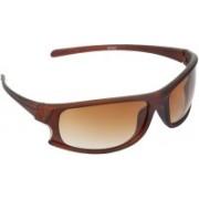 Redleaf Sports Sunglasses(Brown)