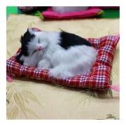 ER Simulación De Juguetes Para Gatos-En Blanco Y Negro