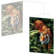 ECOeverywhere Firelines Boxed Card Set 12 Cards and Envelopes 4 x 6 Inches Multicolored (bc12325)