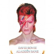 Geen Poster David Bowie Aladdin Sane 61 x 91,5 cm - Action products