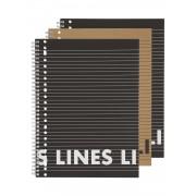 HEMA 3-pak Collegeblokken A4 Gelinieerd